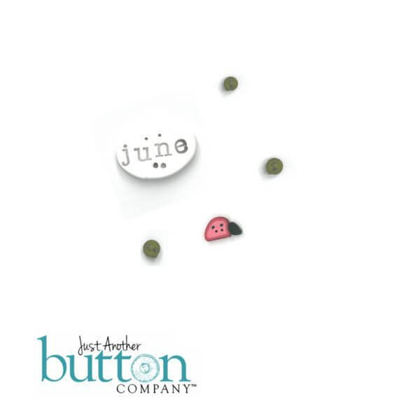 Chalk Squared June Button Embellishment Pack - Hands On Design